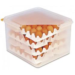 Taca na jajka